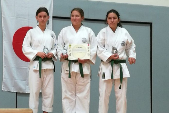 Karate Grenzlandcup