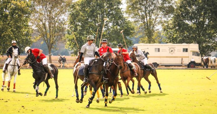 Rhein-Polo-Club-Düsseldorf-Willich-Turnier